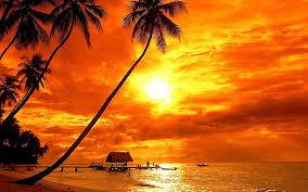 HD wallpaper: Bora Bora Tropical Sunset Beach Palm Trees Red Sky Clouds  Ultra Hd 4k Wallpaper For Desktop Laptop Tablet Mobile Phones And Tv  3840х2400   Wallpaper Flare