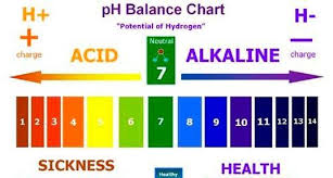 Alkaline Ph Level Chart How Ph Levels Affect Your Skin And Acne Makeup For Oily