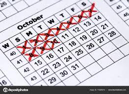 Pregnancy Calendar Macro View Precise Calendar Stock Photo