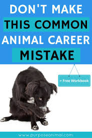 best images about career change employee benefit are you thinking about an animal career be sure to check out this blog post