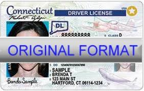 Authority Drivers Issuing Georgia License For