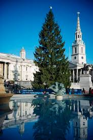 Christmas Poetree: Trafalgar Square's poetic lighting ceremony ...