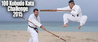 Golden fist karate studio ithaca ny