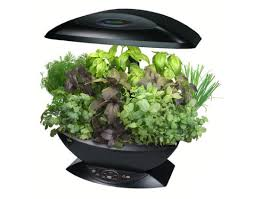 hydroponic herb garden. Design Hydroponic Herb Garden R