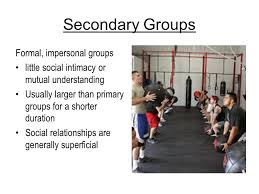Secondary Group Groups Objectives Summarize The Major Features Of Primary