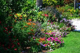 Small Picture Garden Design Garden Design with Perennial Plant Information u