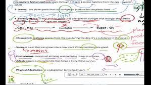 Kids. grade 3 science worksheets: Grade Science Worksheet Unit ...