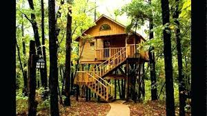 kids tree house for sale. Livable Tree Houses For Sale Large Size Of House Interior Plans Kids Best E