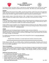 Resume Text Examples