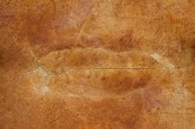 stained concrete floor texture.  Floor 23193310  Cracked Stained Rust Red Concrete Floor Texture On Stained Concrete Floor Texture