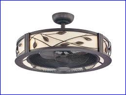 enclosed ceiling fan. Enclosed Ceiling Fan With Light   Cage Pinterest