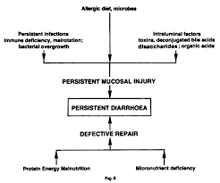 Understanding And Managing Acute Diarrhoea In Infants And