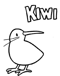 Small Picture Kiwi Bird Chick Coloring Pages Kiwi Bird Chick Coloring Pages