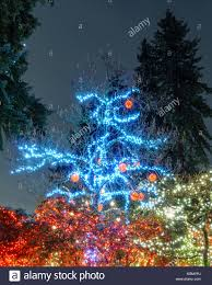 Lighting North Vancouver North Vancouver Canada January 27 2018 New Year And