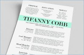 Cute Resume Templates Adorable Cute Resume Templates Free Best Of Cute Resume Templates Free