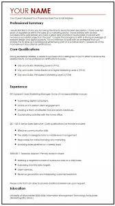 Put My Cv Online Best Cv Example Myperfectcv