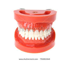 chattering teeth stock photo 22509556 shutterstock