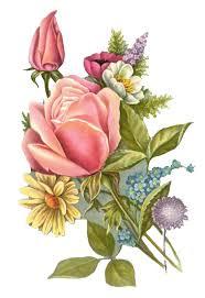 beach rose flower oil painting fl decorative pattern