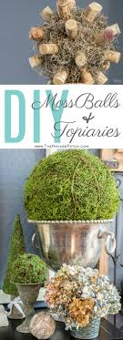 Decorating With Moss Balls Awesome Marimo Moss Ball In Miniature Aquarium This And More Pics 26