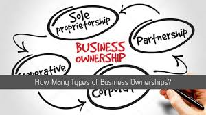Business Ownership Types How Many Types Of Business Ownerships Pro Lifestyler