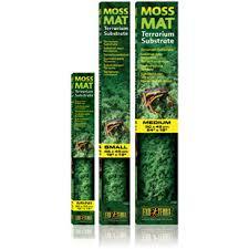 Moss Mats Exo Terra Moss Mat Medium Amazing Amazon