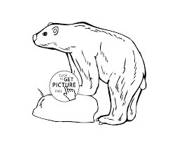Small Picture Little bear animals coloring pages for kids printable free