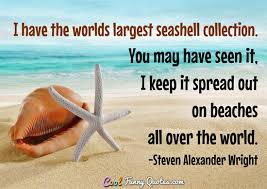 sea shell quotes i have the worlds largest seashell collection you may have