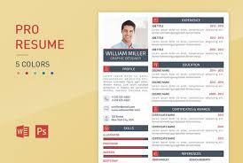 Resume Templates 2018 New 28 Professional Business Resume Templates For 2028
