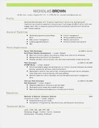 Download Newsletter Template Word 2003 New Download Newsletter