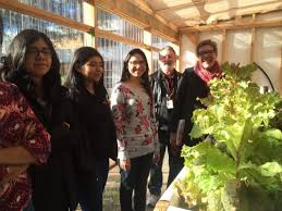 linda lehmusvirta from pbs station klru ed the crockett garden and aquaponics system the story features students from the garden club aquatic science