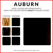 46 Always Up To Date Alter Ego Hair Dye Color Chart