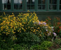 Kitchen Garden Blog Native New England Plants New England Habitat Gardening Blog