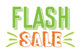 Sale Quote Flash Sale Quote Svg Cut