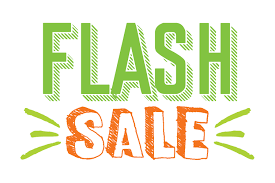 Image result for flash sale