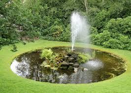 outdoor garden ponds take care turtle