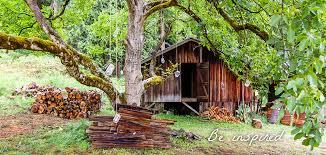 treehouse masters spa. Story Behind Treehouse Resort \u0026 Spa Masters
