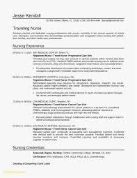 Resume Service Resume Template