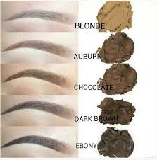 Phibrows Color Chart Different Microblading Shades Microblading Pigment Options
