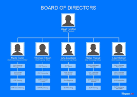 Download Free Organizational Chart 1 In 2019