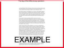 the day of the triffids essay questions term paper academic  the day of the triffids essay questions sample essays for essays in existentialism bernhard wunderle