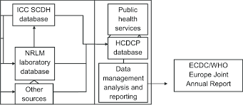 Structure Of The Greek Tb Surveillance And Notification