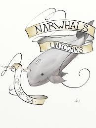 daily drawing narwhals daily drawing narwhals cute narwhal kawaii narwhal wale unicorns and