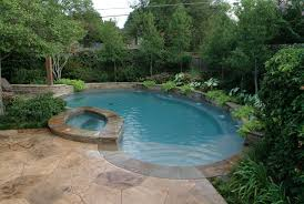 Custom Backyard Pool Designs Dfw Landscape Design News Small Backyard Pools Backyard