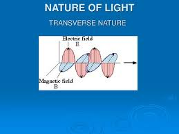 Transverse Nature Of Light Ppt Nature Of Light Powerpoint Presentation Free Download