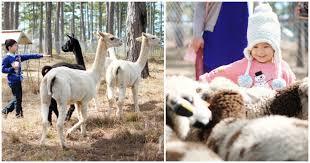 Kết quả hình ảnh cho vườn thú đà lạt