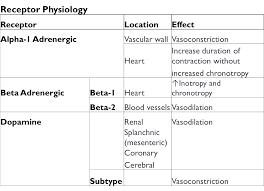 Adrenergic Receptors Chart Adrenergic Receptor Physiology The Unofficial University