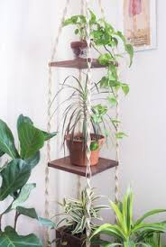 ipot modular planting system supercake. House Tour: An Apartment With A Chill 1970s Feel Ipot Modular Planting System Supercake