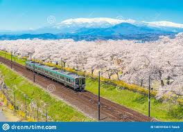 Japan Landscape Scenic View Of Jr Tohoku Train With Full