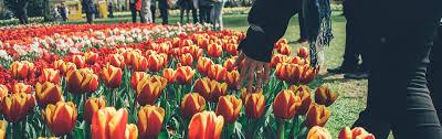 largest flower garden