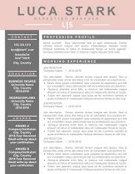 Resume Cv Professional Template Downloadable Modern Creative Format